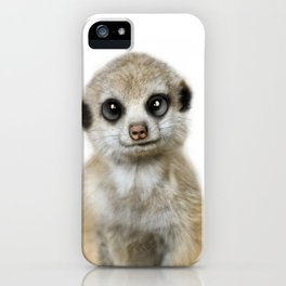 Meerkat Suricat suricatta iPhone Case