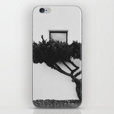 bonsai iPhone & iPod Skin