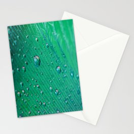 Emerald Feather Stationery Cards