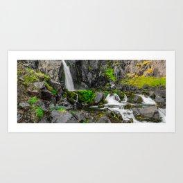 Moss Water Fall Art Print