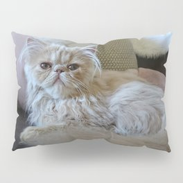 Fluffy Butters Pillow Sham