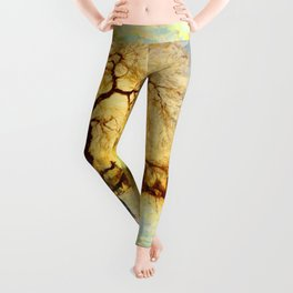 Walk Under the Willow Leggings