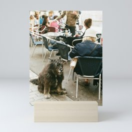A dog waits at a cafe in Barcelona Mini Art Print