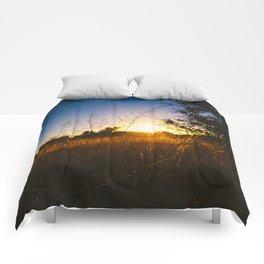 Last Light Comforters