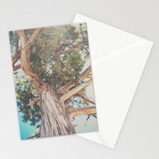 looking up through the leaves of the Juniper Tree ... Stationery Cards