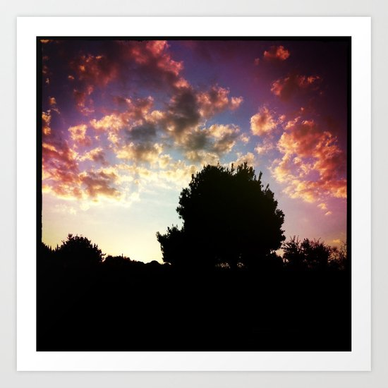 Sunset's Trees Art Print