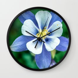 Colorado Columbine // States Flower Close up Purplish Blue Petals White and Yellow Accents Wall Clock