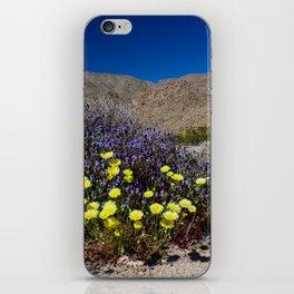 Painted Desert 7442 - Joshua_Tree_National_Park iPhone Skin