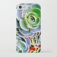 succulent iPhone & iPod Cases featuring succulent by natureee