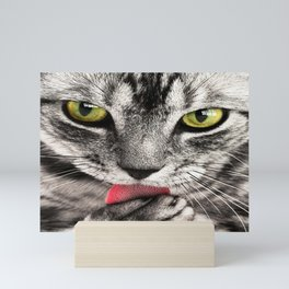 Cat Mini Art Print