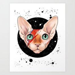 Sphynx Bowie Art Print