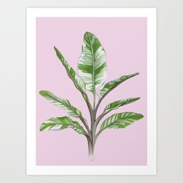 House Plant Art Prints Society6