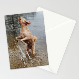 Water Jump Stationery Cards