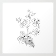 black-and-white arrangement of flowers and leaves Art Print