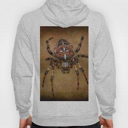 The Garden Spider Hoody