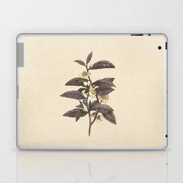 Late Bloom  Laptop & iPad Skin