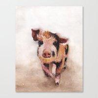 pig Canvas Prints featuring Pig by Bridget Davidson