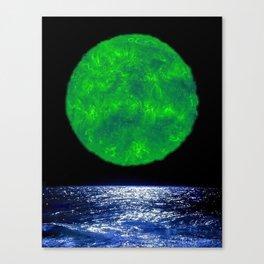 3D3 Canvas Print