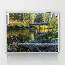 Fall at Clear Lake, No. 1 Laptop & iPad Skin