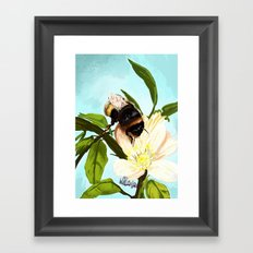 Bee on flower 4 Framed Art Print