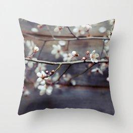 Plum and Mocha Throw Pillow