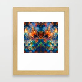 Swims with Fishes Framed Art Print