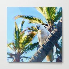 Botanical Birds Metal Print