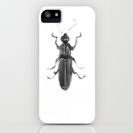 Dhysores quadriimpressus iPhone Case