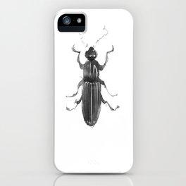 Dhysores quadriimpressus iPhone Case