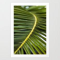 Palmleaves - Sicily Art Print