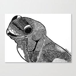 Hello Gecko Canvas Print