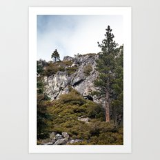 Mountains and Forest, Lake Tahoe Art Print