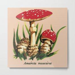 Mushroom illustration : Amanita muscaria Metal Print