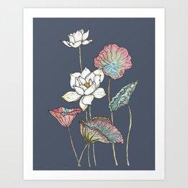 Lotus Symphony Art Print