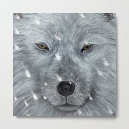 The Amber Eyed Wolf Metal Print