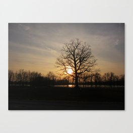 Ixonia Marsh Canvas Print