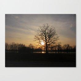 Ixonia Marsh Canvas Print