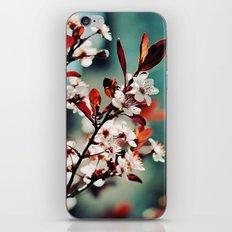 Beautiful Spring iPhone & iPod Skin