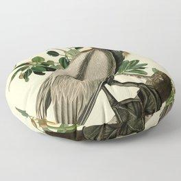 Brown Pelican (Pelecanus occidentalis) Scientific Illustration Floor Pillow