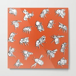 Bombus Lapidarius - Orange Metal Print
