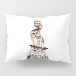 Stacked Owls Pillow Sham