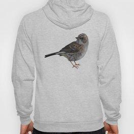 Dunnock Bird Hoody