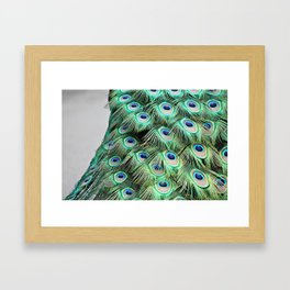 LIGHT AS A BIRD Framed Art Print