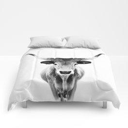 Honey - black and white Comforters
