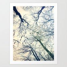 The Sky Above Art Print