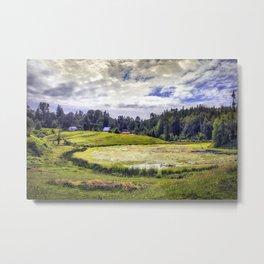 August Pond Metal Print