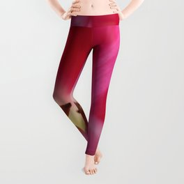 pink tulip • photography Leggings