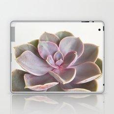 Purple Succulent Laptop & iPad Skin