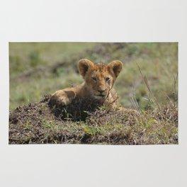Adorable Lion Cub Rug