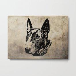 English Bull Terrier Metal Print